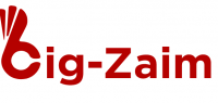 Big Zaim